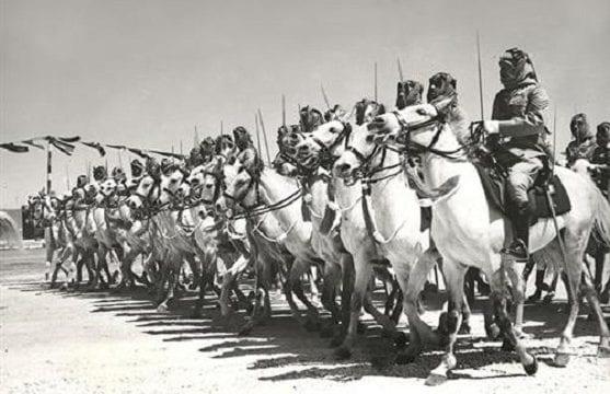 الثورة العربية الكبرى الموقف المصري