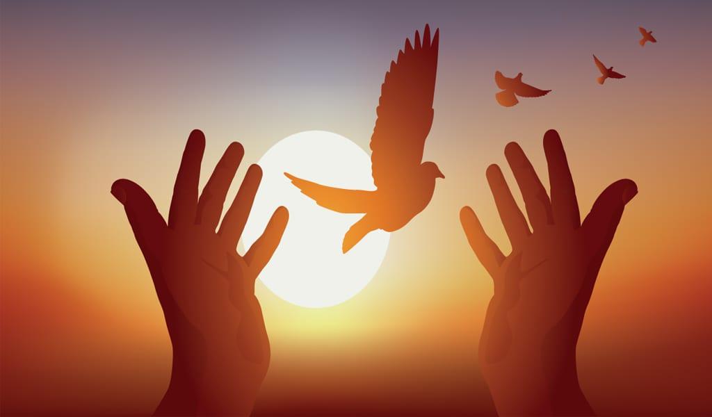 الشيخ محمد الراوي: رمز الدعوة الإسلامية والأزهر الشريف ورفيق القرآن الصادع بالحق 9